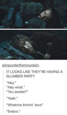 Hobbit Bilbo, Lotr, Bagginshield, Movie Talk, An Unexpected Journey, Jrr Tolkien, Dark Lord, Slumber Parties, The Elf