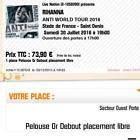 #Ticket  2 places de concert Rihanna Pelouse OR E-ticket #liveevents