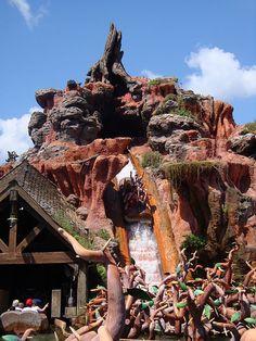 Splash Mountain ~ Walt Disney World, Magic Kingdom l Lake Buena Vista, Florida My favorite ride Disney World Attractions, Disney World Rides, Disney World Florida, Disney Resorts, Disney Vacations, Disney Parks, Walt Disney World, Vacation Spots, Splash Mountain