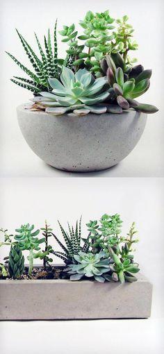 Os vasos de cimento ou concreto são itens que estão super em alta, são resistentes e podem ser usados dentro ou fora de casa. Essas peças são perfeitas