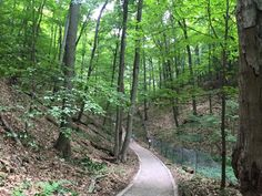10 Michigan Trails to check out!  (pictured - #4: Rosy Mound Natural Area, Grand Haven)