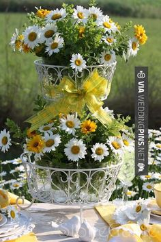 Sweet! - Wedding Motif 2015 - Pretty daisies centerpiece for a country lunch outdoors reception wedding flowers, wedding decor, wedding flower centerpiece, wedding flower arrangement. http://www.myfloweraffai... can create this beautiful wedding flower look. | CHECK OUT THESE OTHER GREAT PICTURES OF GREAT Wedding Motif 2015 HERE AT WEDDINGPINS.NET | #weddingmotif2015 #weddingmotif #motifs #boda #weddings #weddinginvitations #vows #tradition #nontraditional #events #forwedding