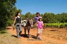 En balade avec des ânes http://www.provence-en-famille.fr