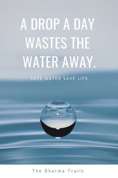 A drop a day wastes the water away. A leaking tap can loose thousands of gallons of water over a year! Here are some tips on saving water and some free water saving slogans with images! Heading towards a water smart future! Life Slogans, Cool Slogans, Save Water Slogans, Save Water Quotes, Save Water Save Life, Water Footprint, Charity Water, World Water Day, Water Purification