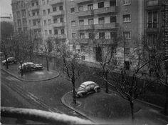 Lisboa - Neve na Av. António Augusto de Aguiar (1954)
