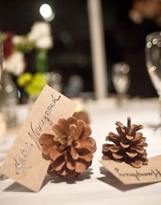 Ideas Wedding Seating Ideas Reception Card Holders Pine Cones For 2019 Fall Wedding, Rustic Wedding, Our Wedding, Wedding Ideas, Wedding Signs, Wedding Photos, Wedding Reception Seating, Reception Card, Seating Cards