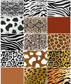 Animal Prints – From Retro till Date, A Never-Fading Fashion Trend Les textures de peau des animaux Animal Print Fashion, Animal Print Rug, African Animals, African Art, Afrika Shop, Carta Collage, Le Zoo, Motifs Animal, Safari Animals