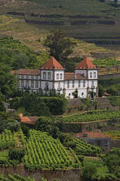 A special stay in a traditional baroque style manor in the Douro Valley