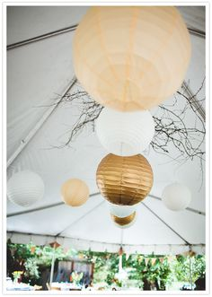 paper lanterns in white & ivory (and maybe gold) for the barn interior, or possibly strung  over the reception area.