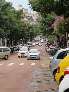 Calle centrica de Foz do Iguazú