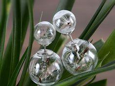 Ohrringe - WISH Ohrstecker echte Pusteblumen Doppel Perlen - ein Designerstück von Kleines-Karma bei DaWanda