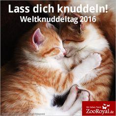Liebe ist eine Umarmung die nie endet! Alles Gute zum #Weltknuddeltag <3!