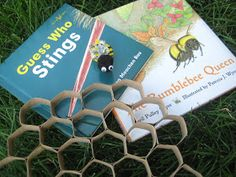 Relentlessly Fun, Deceptively Educational: Bees, Hexagons, and a Honeycomb
