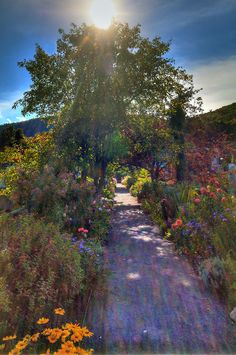 Photographer, Writer and Spiritual Counselor, Paul Hood: More Bridge of Flowers at Shelburne Falls
