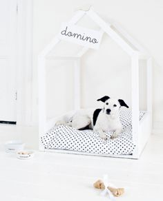 DIY Dog House- but with detachable fabric around the outside for Lexus who likes to hide!