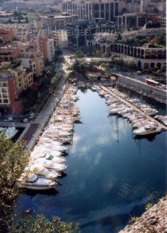 I can't wait to go to Monaco and maybe live there one day for the rest of my life!
