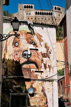 I had an unexpected hour in the Central Portugal town of Leiria on Saturday. Take pictures, of course. The Beautiful Country, Western Australia, Natural Wonders, Lisbon, Murals, Mount Rushmore, Trips, Street Art, 1