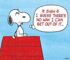 Did you know #Snoopy is now on #Twitter? Follow him :) #Peanuts www.twitter.com/snoopy