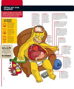 El alcohol y sus efectos.