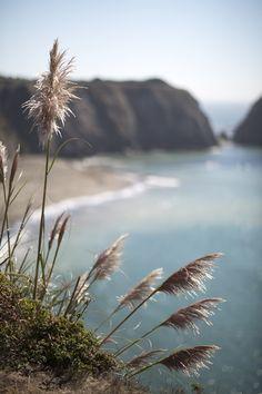 California_Travel_Photographer_Maru_Photography (6).jpg