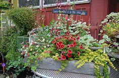 Vintage Lady Garden Tour