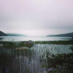 Early Morning at Eagle Lake Acadia National Park  #water #morning #eagle #lake #acadia #national #park #photography