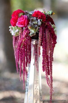 Image result for amaranthus drape in vase