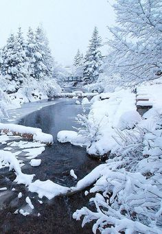 Snow in Estes Park, CO - The first real winter storm descends on Estes Park and . - Snow in Estes Park, CO – The first real winter storm descends on Estes Park and buries Riverside - Winter Szenen, Winter Storm, Winter Night, Winter Photography, Nature Photography, Estes Park Colorado, Colorado Usa, Colorado Winter, Skiing Colorado