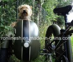 Bicycle Sidecar, Dogs, Animals, Animales, Animaux, Pet Dogs, Doggies, Animal, Animais