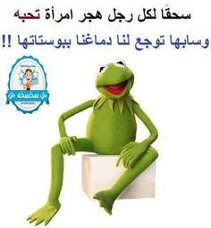 . Arabic Jokes, Arabic Funny, Funny Arabic Quotes, Friends Wallpaper, Kermit The Frog, Color Of Life, Beautiful Sunset, Funny Jokes, Comedy