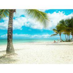 'Like' this if you want a Tropical Escape to Pigeon Point, Tobago   Image Credit: AJ Agatajoanna / agi_1908 via Instagram   #Tobago #Trinidad #TrinidadAndTobago #Caribbean #POTD #PhotoOfTheDay #TobagoBookings #PigeonPoint #PigeonPointTobago #PigeonPointHeritagePark #PigeonPointBeach #Beach #CaribbeanBeach