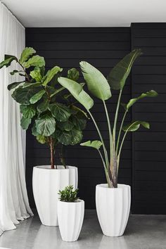 Featuring a unique rippled design, Allia Concrete Planters can be inserted with lush greenery to add interest to both gardens or indoor spaces #CocoRepublic #outdoor #plants