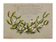 Znalezione obrazy dla zapytania mistletoe wishes