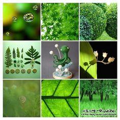색채심리학으로 보는 초록(녹색,그린) : 네이버 블로그