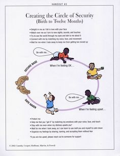 circle of security, care - Google Search