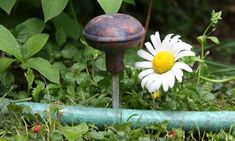 Simple...definitely trying this  Door Knob Garden Hose Guide