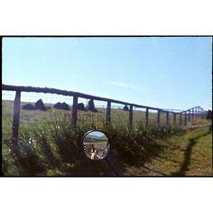 Reflection, Scotland, 1978  #LindaMcCartney #Scotland #Reflection #Summer #1978