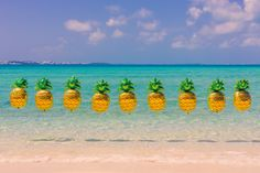 Bermuda Pineapples photograph by Gray Malin - Sparkling Pineapple balloons from Betallic