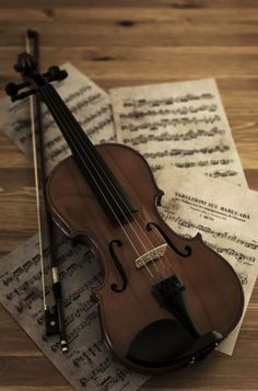 Music Aesthetic, Brown Aesthetic, Character Aesthetic, Violin Art, Violin Music, Cello, Violin Instrument, Guitar Chords, Piano