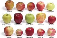 All about apples: which are best for baking, pies, applesauce, fruit platters, etc. So good to know! I usually just stick w Granny Smith because I never know which ones are for cooking, etc. Now I can branch out :)