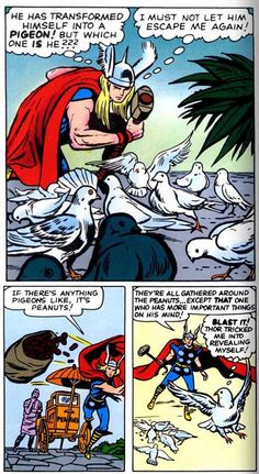 Thor versus pigeon. Oh Thor... But at least he figured out how to discover which one wasn't really a pidgeon--I'm presuming it's Loki