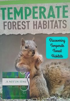 Discovering Temperate Forest Habitats. By A Net In Time.