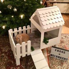 """Gefällt 1,053 Mal, 41 Kommentare - Püppi & James ❤ (@puppijames) auf Instagram: """"Frohe Weihnachten Wir wünschen euch allen entspannte Weihnachtstage mit euren Familien. Macht es…"""""""