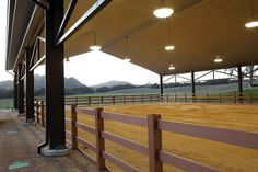 Merriewold Morgan horse ranch Nothing like a covered arena Dream Stables, Dream Barn, Horse Stables, Horse Farms, Cattle Barn, Horse Barn Designs, Horse Arena, Farm Layout, Future Farms