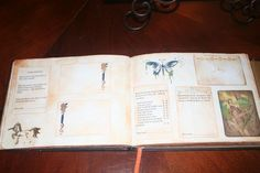 DIY Guest Book with Old World or medieval Theme :  wedding Pageex002