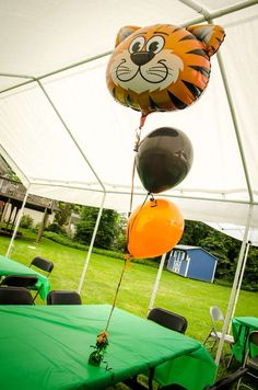 Safari / Jungle Birthday Party Ideas | Photo 3 of 48