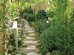 Long Straight Rows Of Mixed Crops And Flowers | Gardening | Pinterest |  Flowers And Gardens