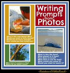 Writing Prompts from Photographs: Alligator, Iguana, Man of War and more! (could be used as conversation starters as well)