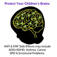 Protect Children From These Little-Known Dangers of EMF https://www.bioelectricshield.com/blog//protect-children-from-these-little-known-dangers-of-emf/