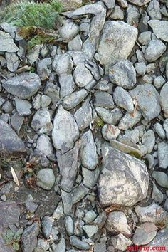 land art - figure in the stone Optical Illusions Pictures, Illusion Pictures, Illusion Kunst, Optical Illusion Art, Art Optical, Art Pierre, When You See It, Wow Art, Photos Of The Week